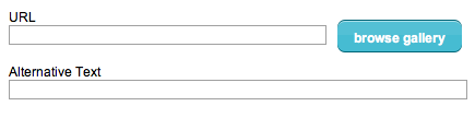 picture of alternate text field in mailchimp